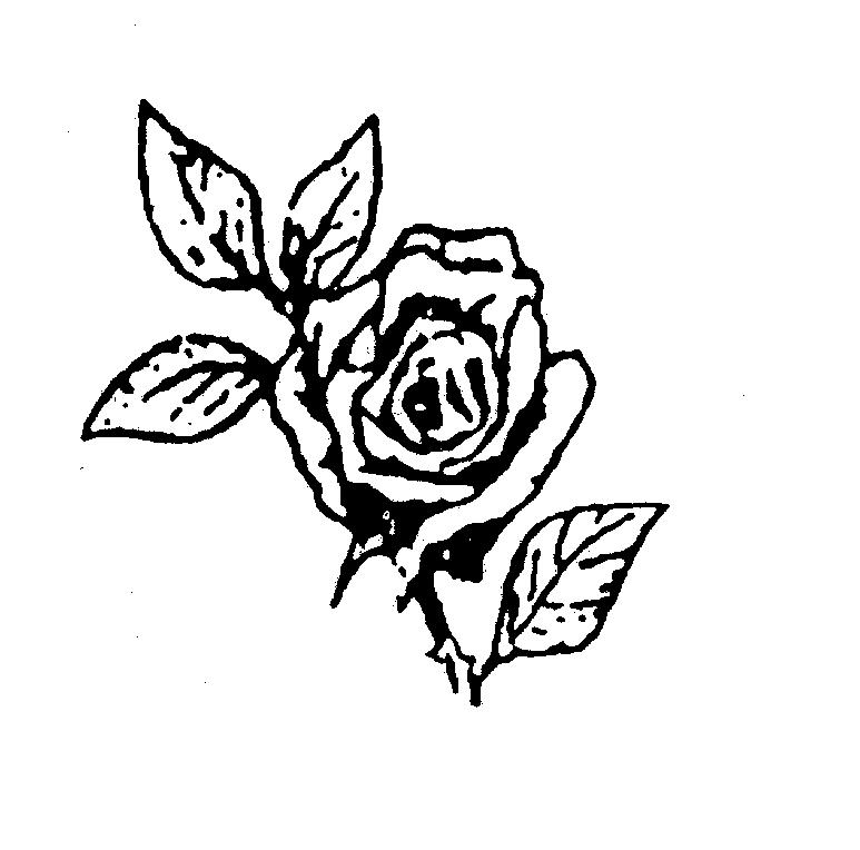 roos-2